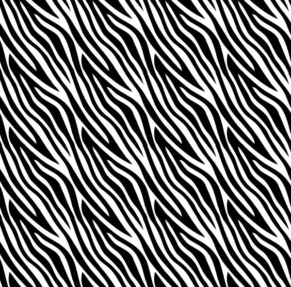 motif, zebré, noir et blanc, habillage, nature, zèbre