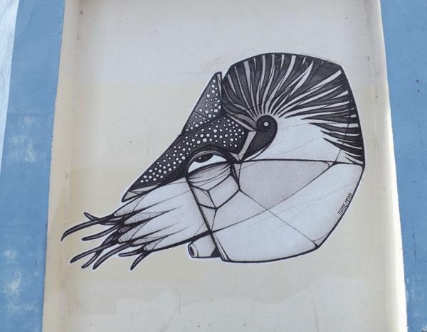teuthis-street-art-nautilus-pompilius
